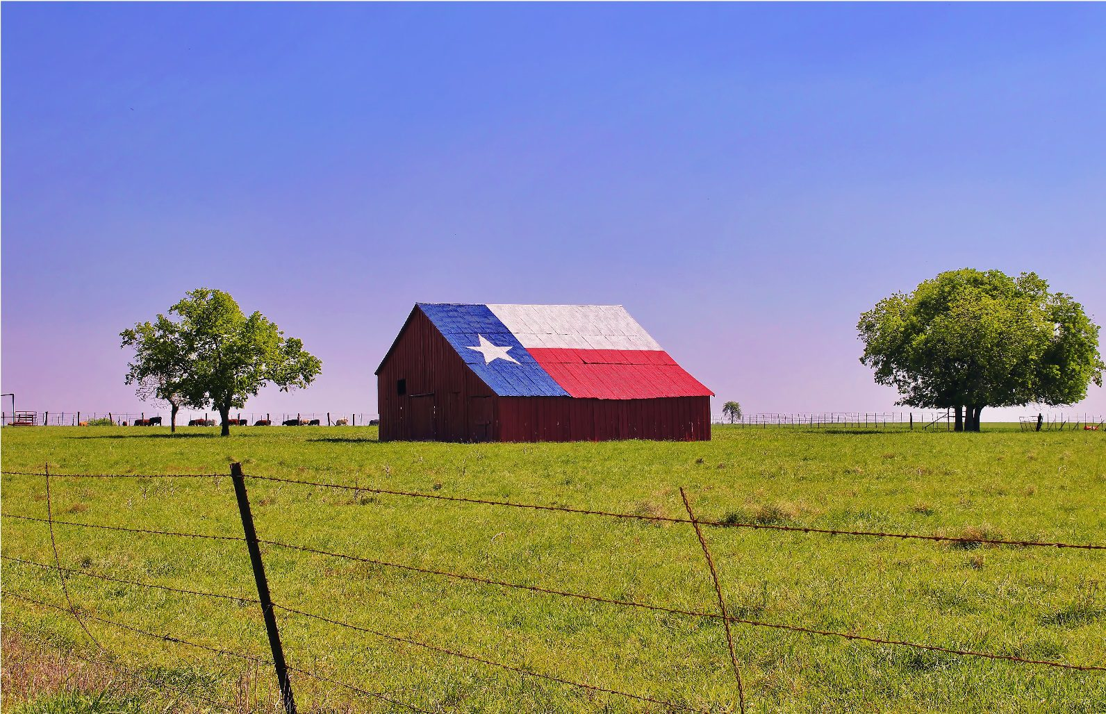 A barn on a Texas ranch with the state flag painted on the roof