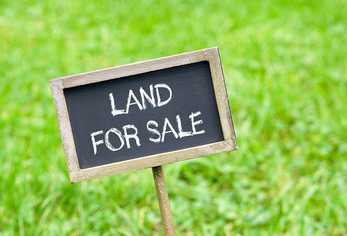 Land for Sale - chalkboard on green grass background